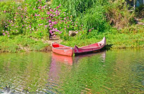 Canoe Stream.jpg