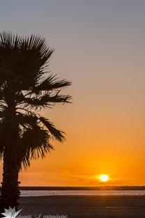 California Sunset.jpg