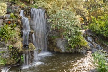 Arboretum Falls 7.jpg