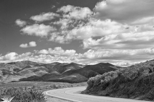 The Road Bw.jpg