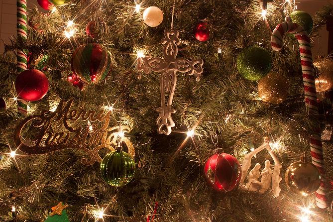 christmas-tree-230269_1920.jpg