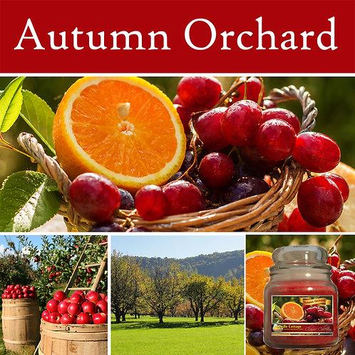 Autumn Orchard