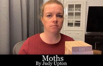 Moths -.jpg