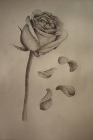 Of a Rose