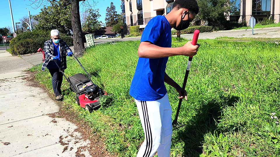 6 Lawn Mower.png