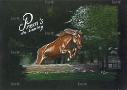 Prem's - 2013