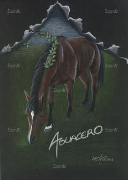 Aguacero - 2013