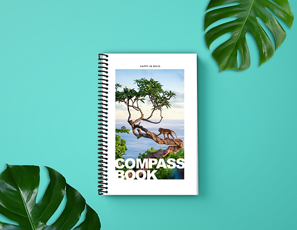 compass book monkey teal crop.png