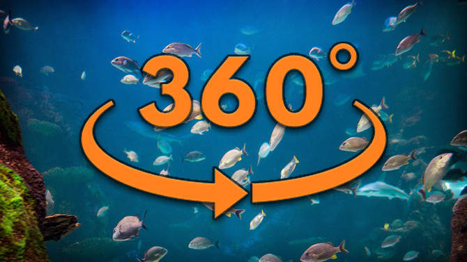 Visit Jamaica's Coral Reef in 360° Virtual Reality