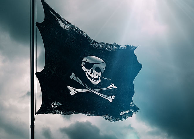 Pirate Flag The Lioness of Brittany Jeanne de Clisson Female French Historical Epic 100 Years War
