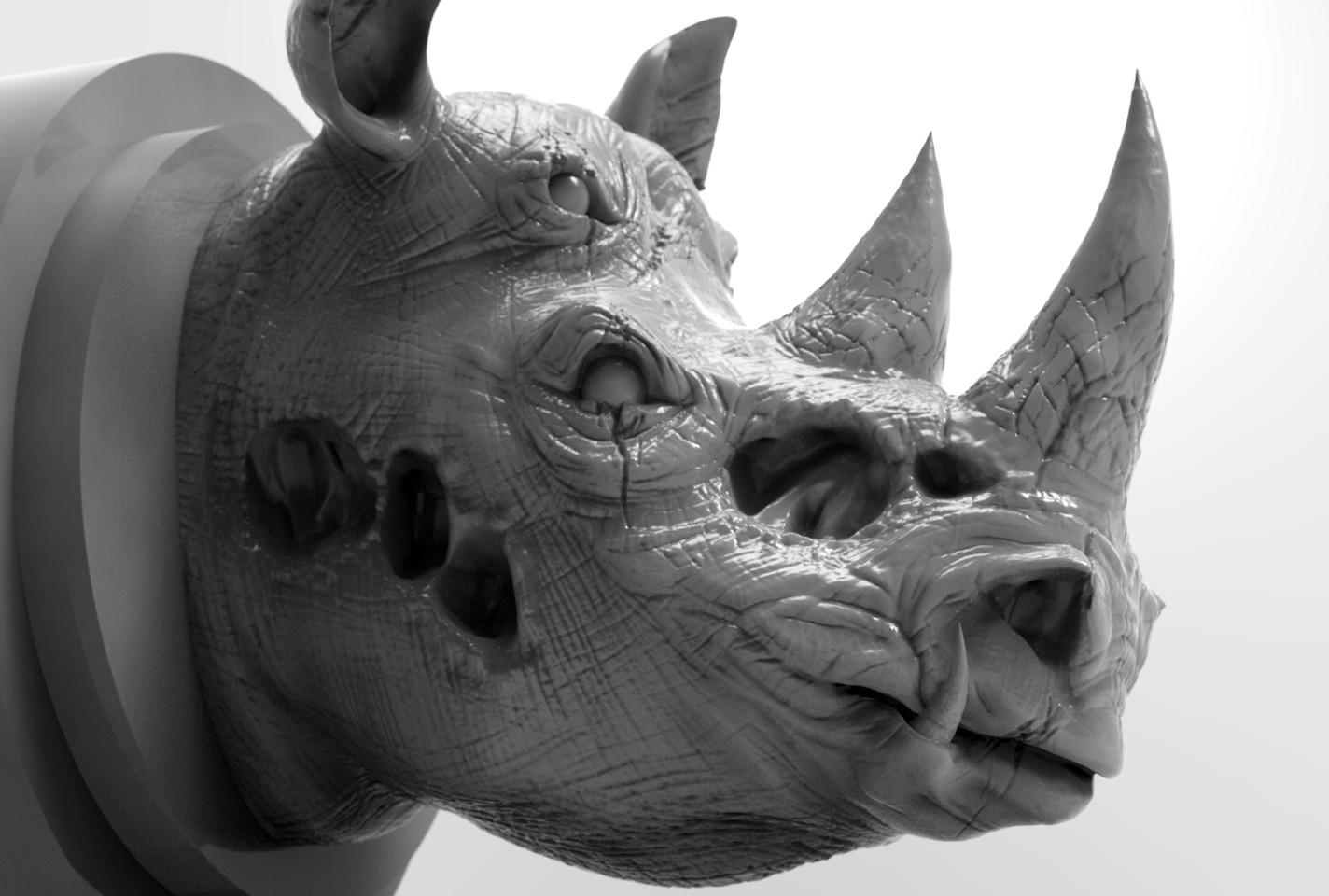 Danger Rhino