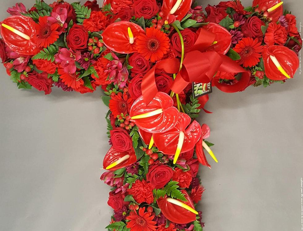 Croix Anthurium