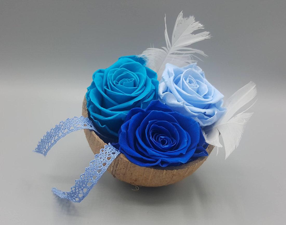 LES ATELIERS D'EGLANTINE, Fleuriste à Eguzon - Roses éternelles, Fleurs séchées