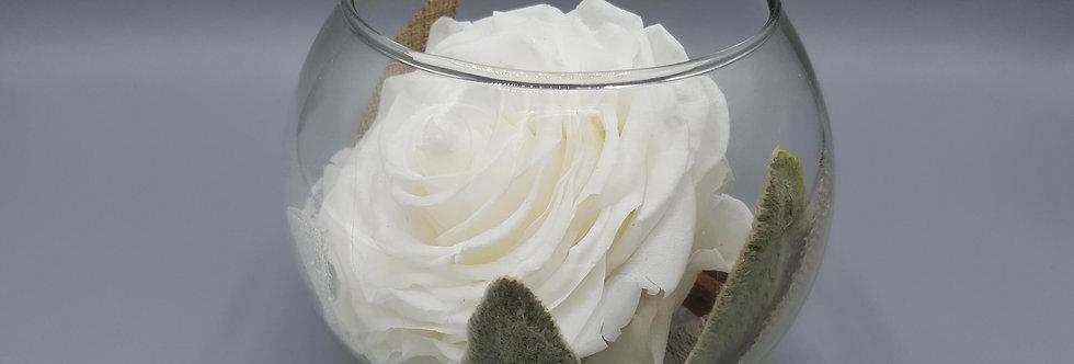 Vase Marie - Rose XXL