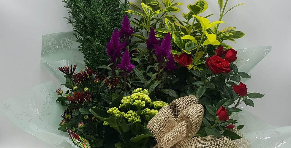 Coupe de plantes Deuil 40cm