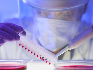 AIRC: battaglia contro il cancro - I parte