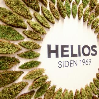 Helios, Moseskilt