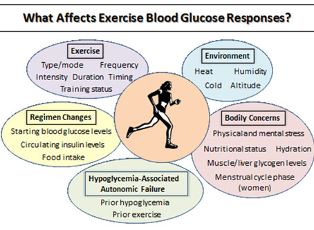 What Causes Blood Glucose to Go Down or Up During Exercise