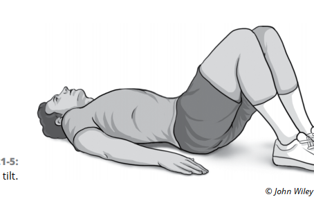 Exercising in a Pandemic: 10 Easy Exercises to Build a Strong Core Without Leaving the House