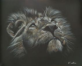 Lion - J'vois loin