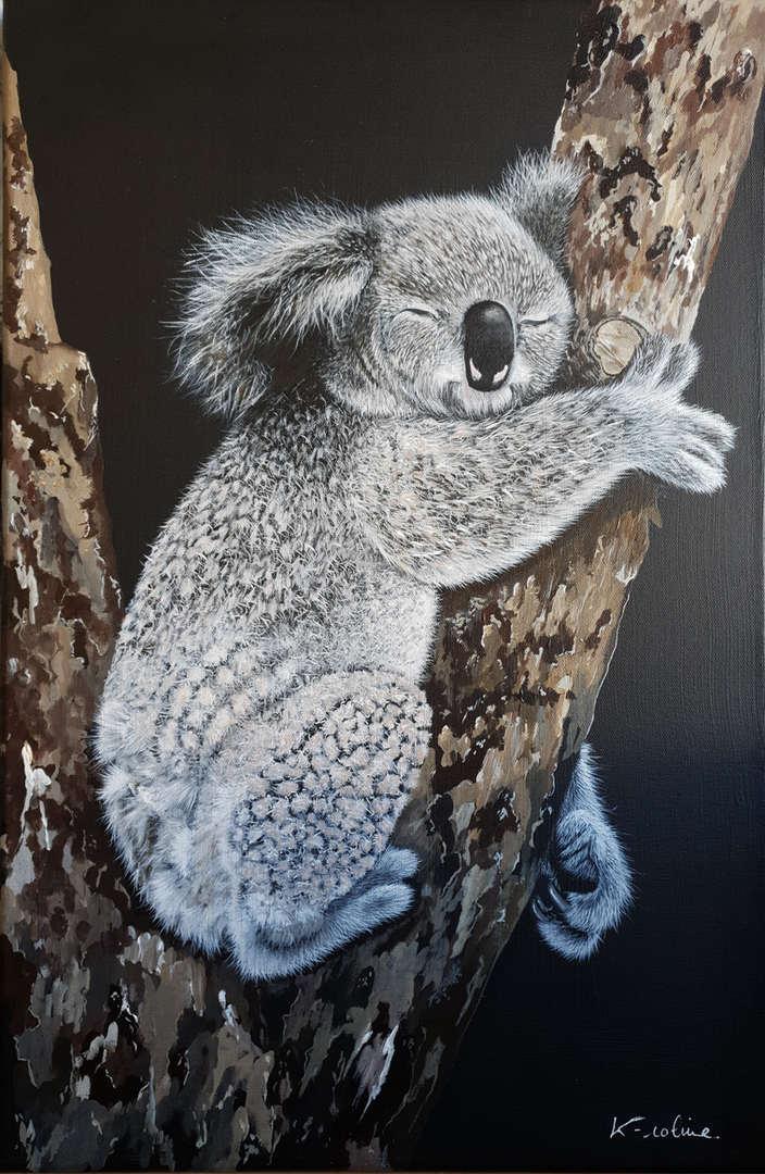 """Koala - """"Süße Träume"""""""