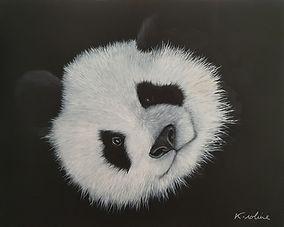 Panda - _Je craque pour toi_