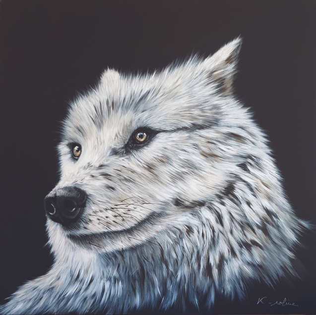 """Wolf - """"There is like a wolf ..."""""""