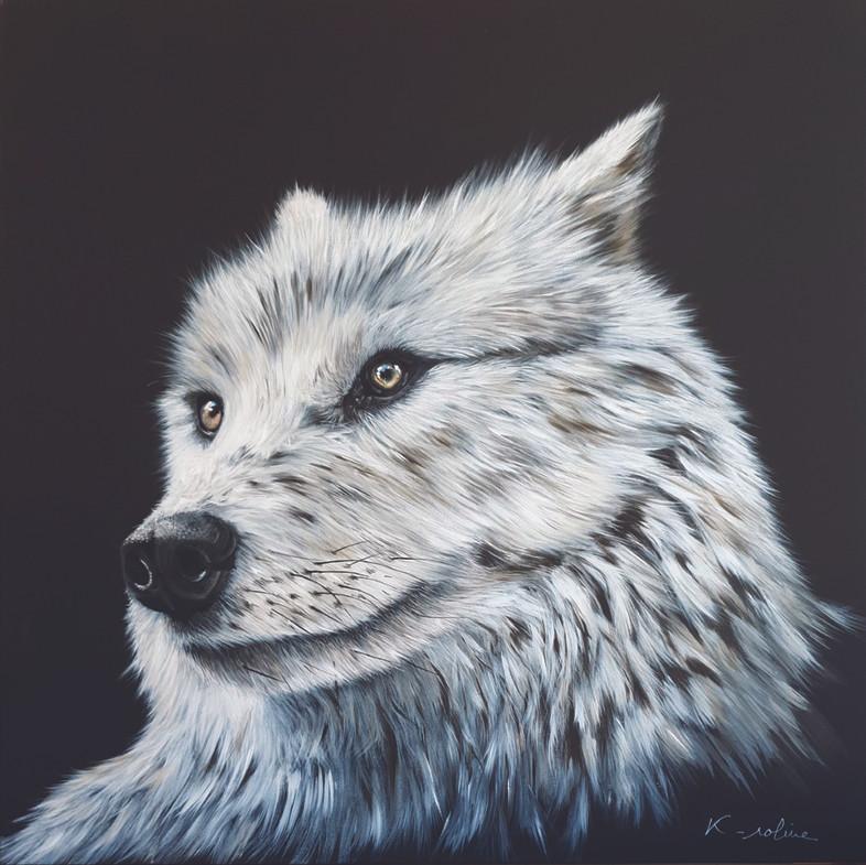 """Loup - """"Il y a comme un loup ..."""""""