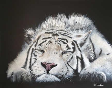 """Tigre - """"Ni tout blanc, ni tout noir"""""""
