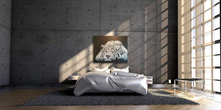 Tigre ambiance chambre.jpg