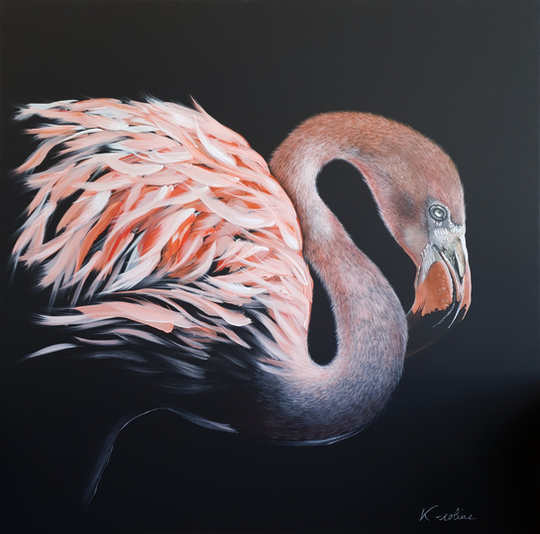 "Pink flamingo - ""I see life in pink ... orange"""