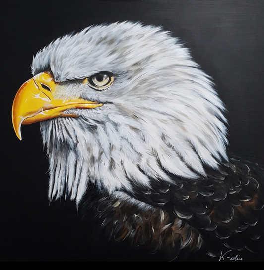 "Eagle - ""J't'ai à l'oeil"""