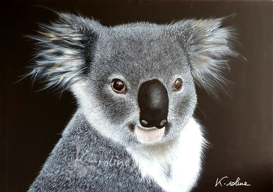 Koala - Accroche-toi