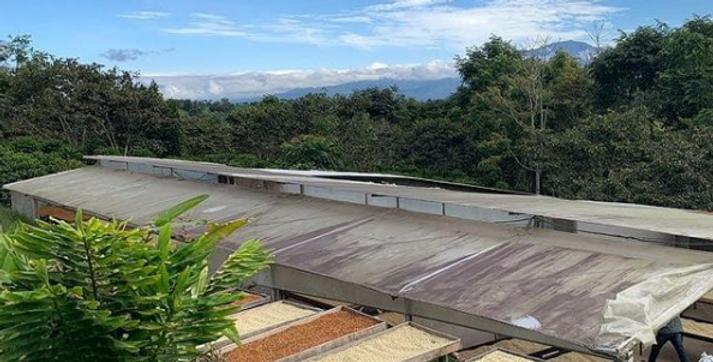 COLOMBIA SANTA ROSA - NATURAL
