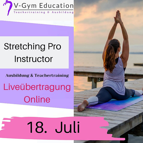 Stretching Instructor Professional