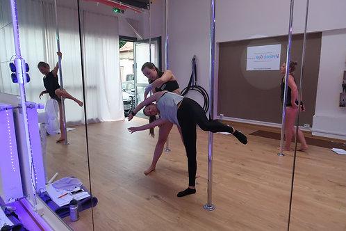 DIPLOM Poledance Trainer A Lizenz // Präsenz & Fernstudium möglich