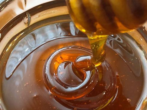 local raw honey, Jonesborough, Tennessee