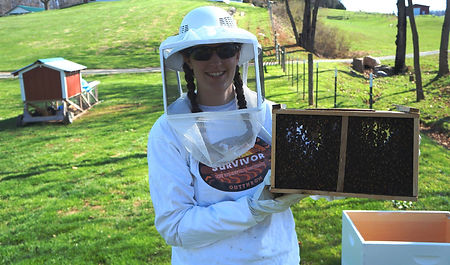 beekeeper with hive, providing local honey