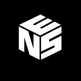 NES Never Enough System LOGO