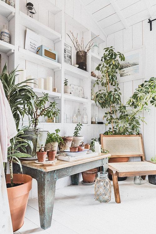 Plant Goals - Mobile Preset