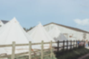 Barn Photos For webiste-1201.jpg