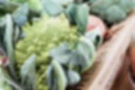 Organic-1005_edited.jpg