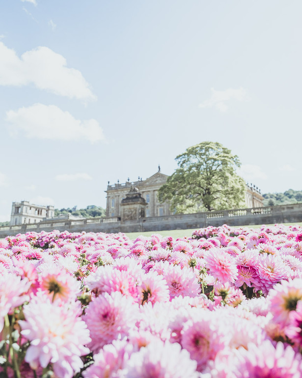RHS Chatsworth-1026.jpg