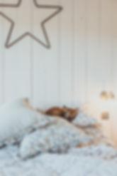 Bedroom Feb 20-1002.jpg