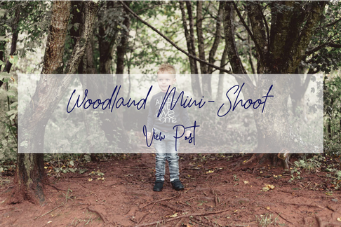 woodland mini.png