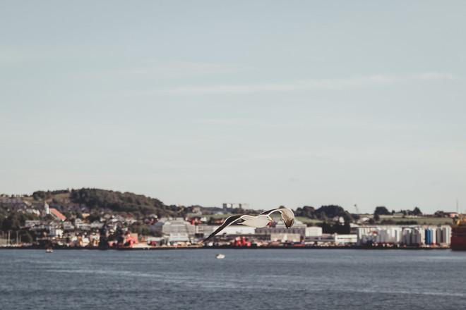 Norway Adventure-1043.jpg