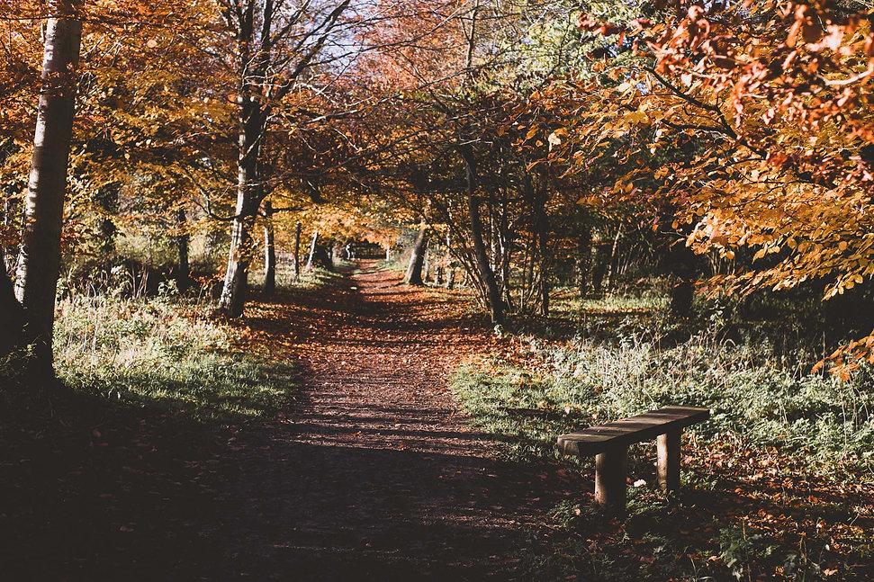Autumnal Cotswold Walks