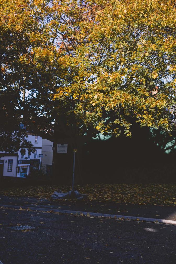 Exeter - Emma Vincent Photography-34.jpg
