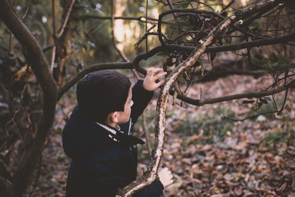family photography wodland Emma Vincent Photography-1010.jpg