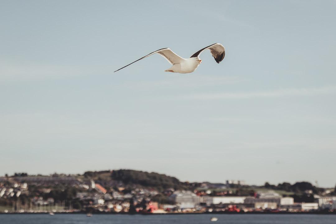 Norway Adventure-1044.jpg